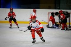 hokej_sile_002
