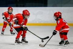 hokej_sile_003