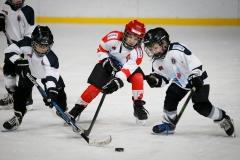 hokej_sile_007