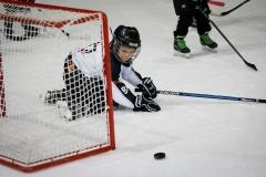 hokej_sile_009