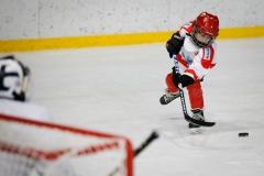 hokej_sile_011