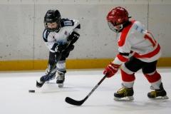 hokej_sile_013