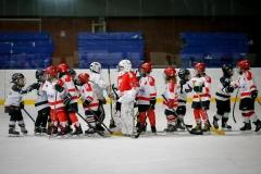 hokej_sile_014