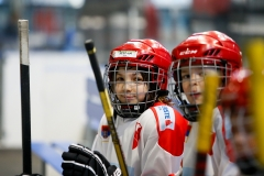 hokej_sile_023