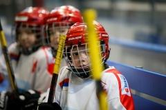 hokej_sile_024